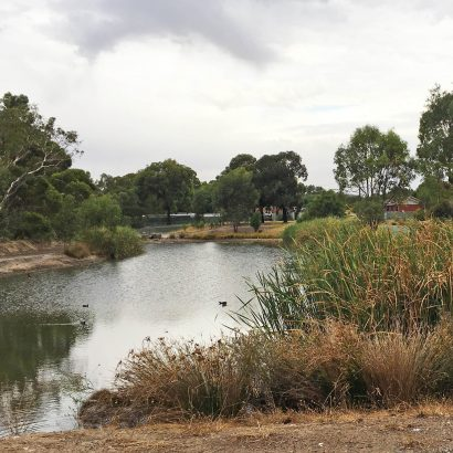 Loop in Morphett Vale on the Christie Creek, Golden Wattle Way, Beach Road Trail and Coast to Vines Rail Trails