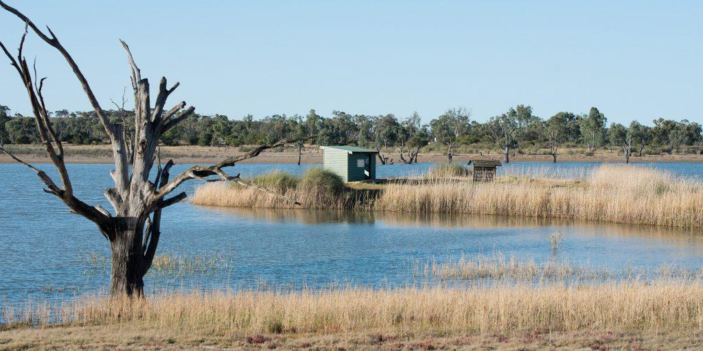Hart Lagoon Wetland Walk