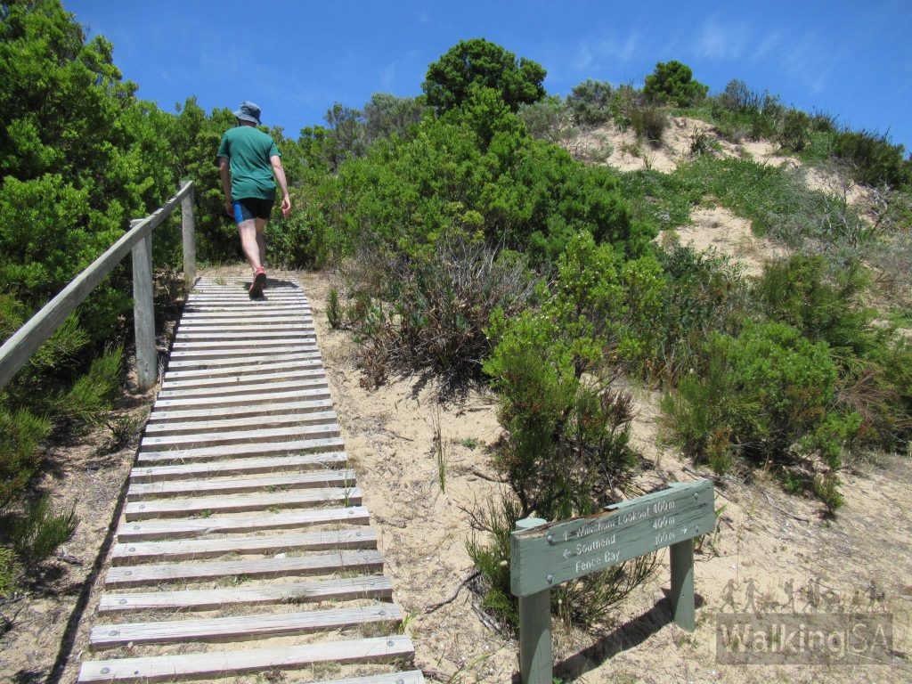 On the Willichum Lookout Walk there is a turn off  which climbs the sand dunes to reach Willichum Lookout