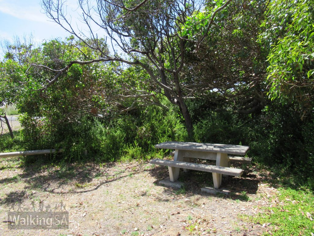 Picnic area on the Cape Buffon Walk