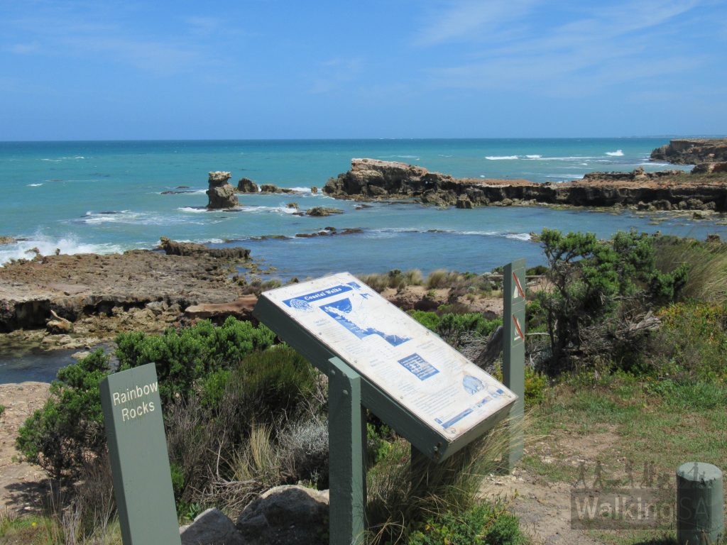 The northern trailhead of the Seaview Walk in Canunda National Park is at Rainbow Rocks