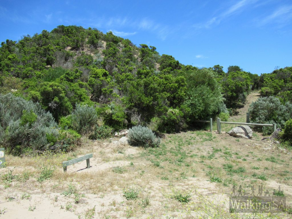 The start of the Willichum Lookout Walk, where it leaves the sandy 4WD track, follow the walking trail from here