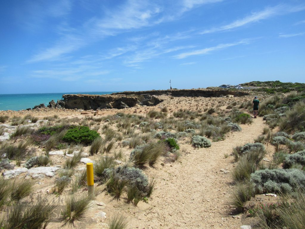 Walking along some of the more exposed coastline of the Cape Buffon Walk