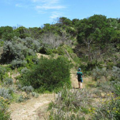 Willichum Lookout Walk, Canunda National Park