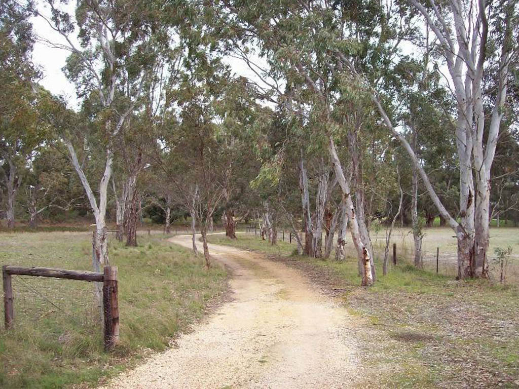 World Heritage Hike at Naracoorte Caves