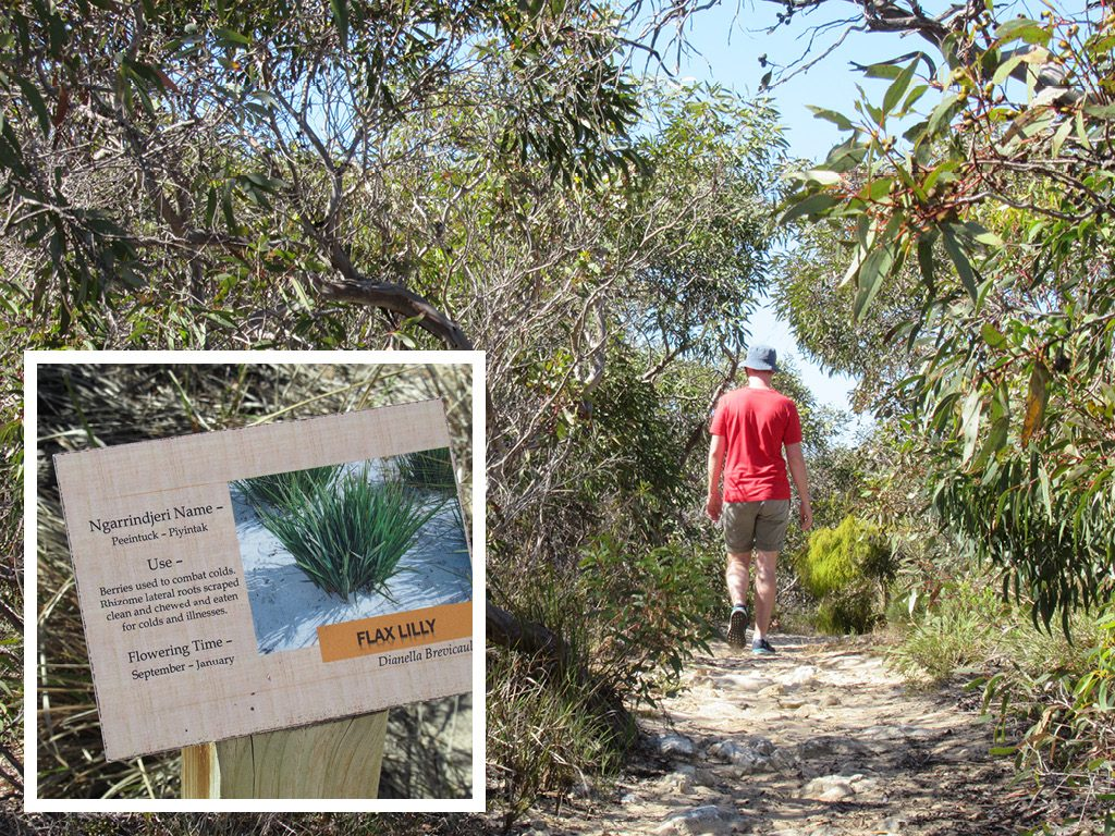 Bonney Reserve Nature Trail
