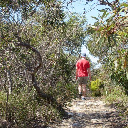 Bonney Reserve Nature Trail