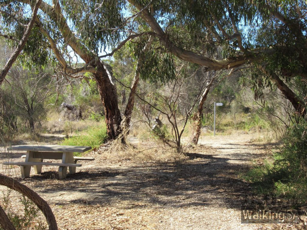 Picnic area on the first stage of the Lions Walking Trail south of Bowman Street