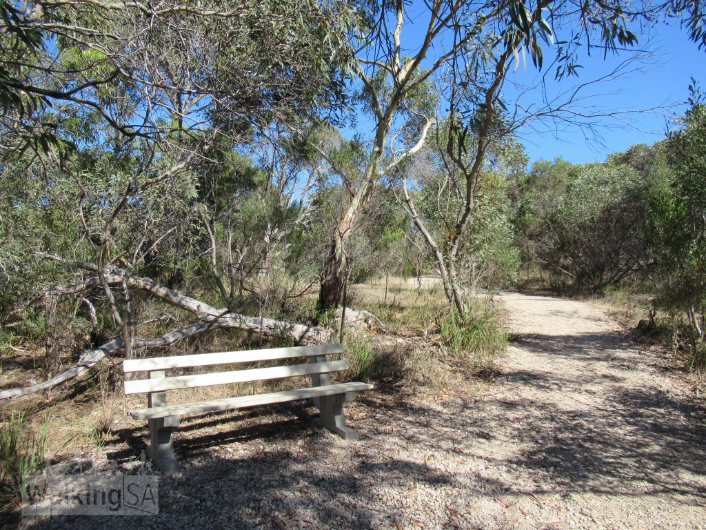 Rest spots along the first stage of the Lions Walking Trail south of Bowman Street