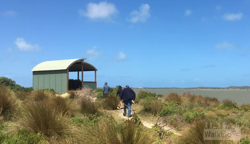 The Pelican Observatory Walk at Jack Point has a viewing platform looking out to the Coorong's pelican breeding islands