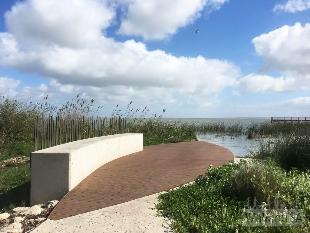 The Pelican Path follows the foreshore of Lake Albert in Meningie