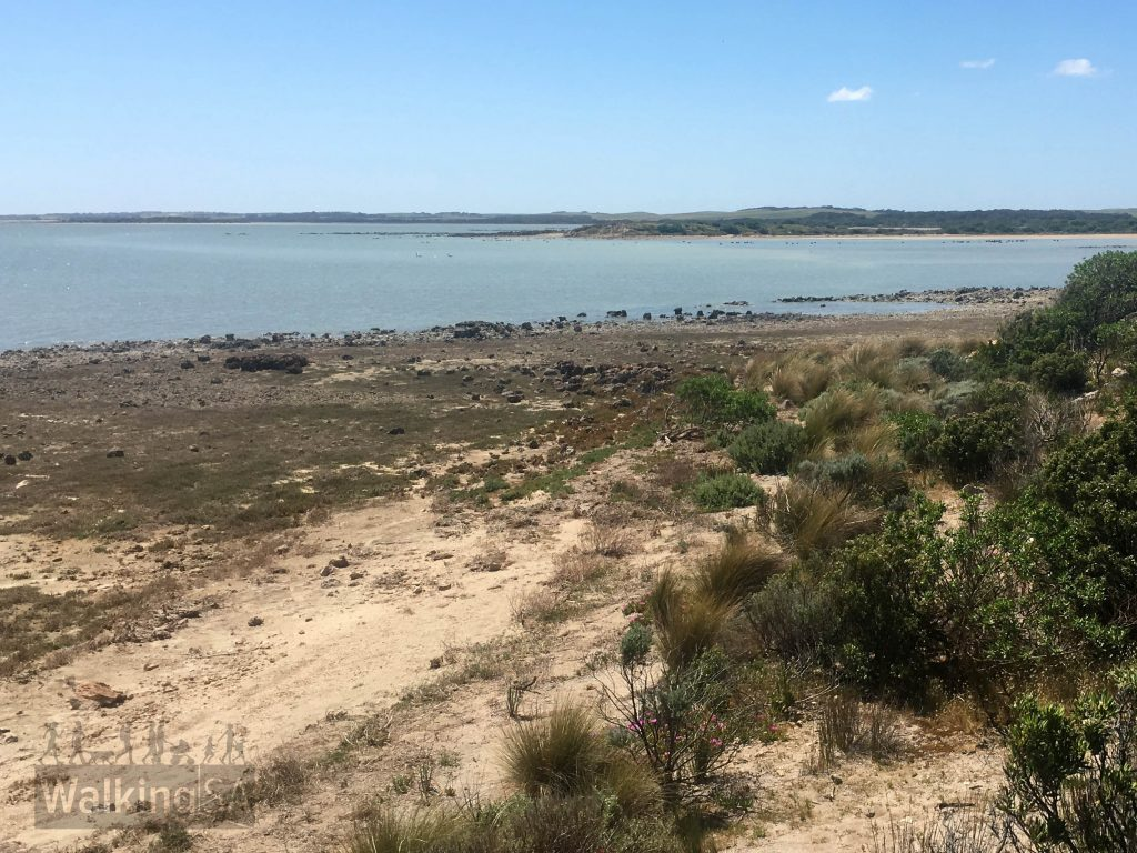 Views of the Coorong from the Ngrugie Ngoppun Walk