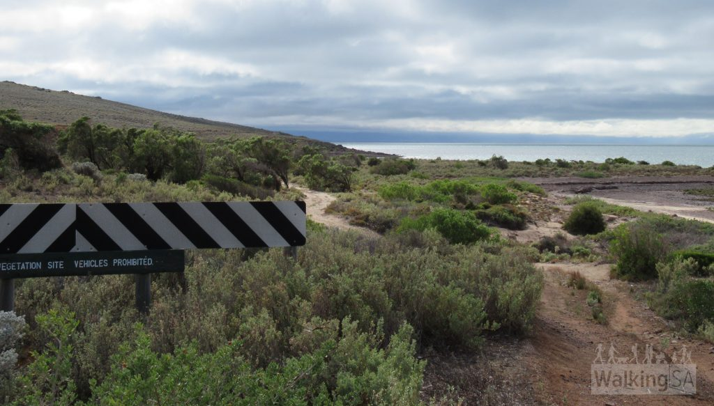 A section of the Freycinet Trail in the north, near the northern end