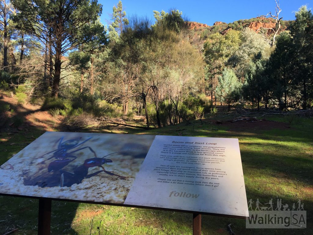 An interpretive sign outlining the wildlife and habitat