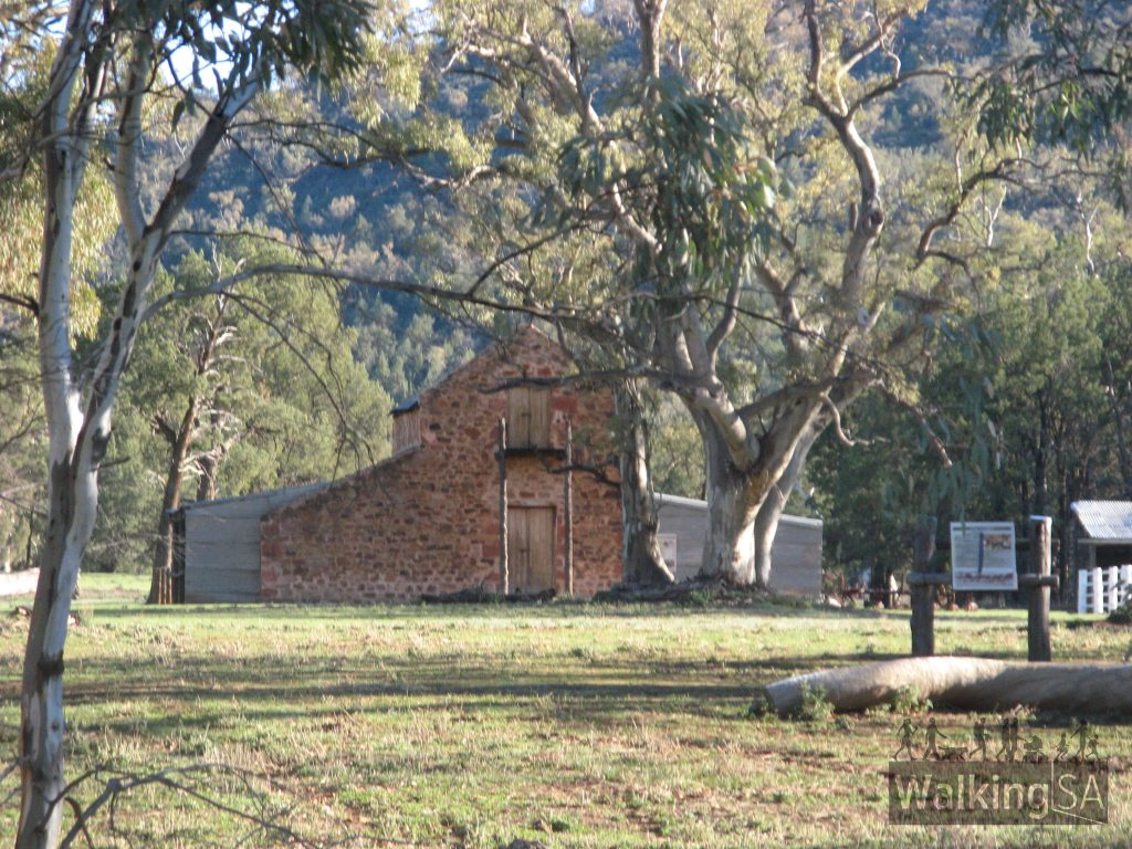 An old farm shed on the Old Wilpena Station on the Living with Land Walk