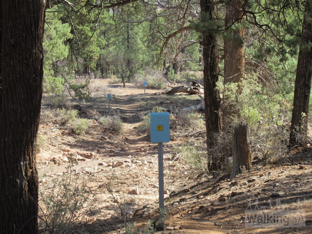 Creek crossing on the Yuluna Hike are well marked with blue markers
