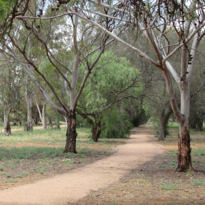 Crystal Brook Township Walking Trail