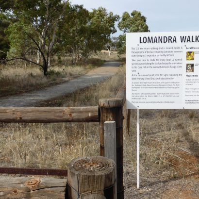 Lomandra Walking Trail, Blyth
