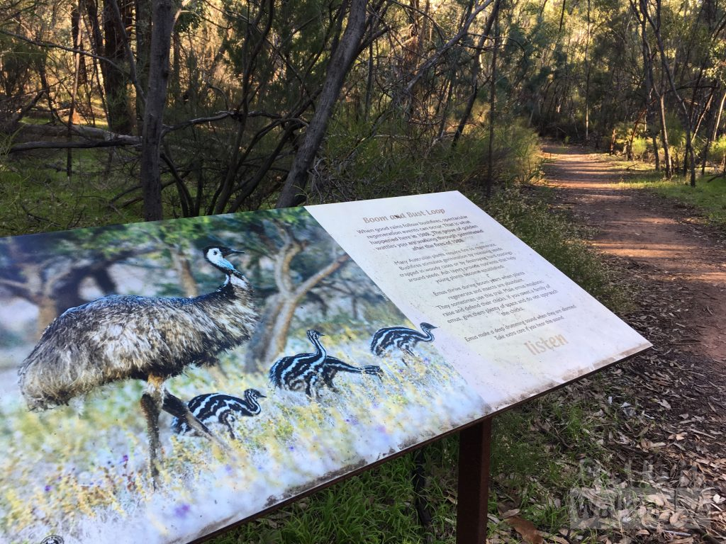 On the Boom and Bust Hike there are plenty of interpretive signs outlining the wildlife and habitat