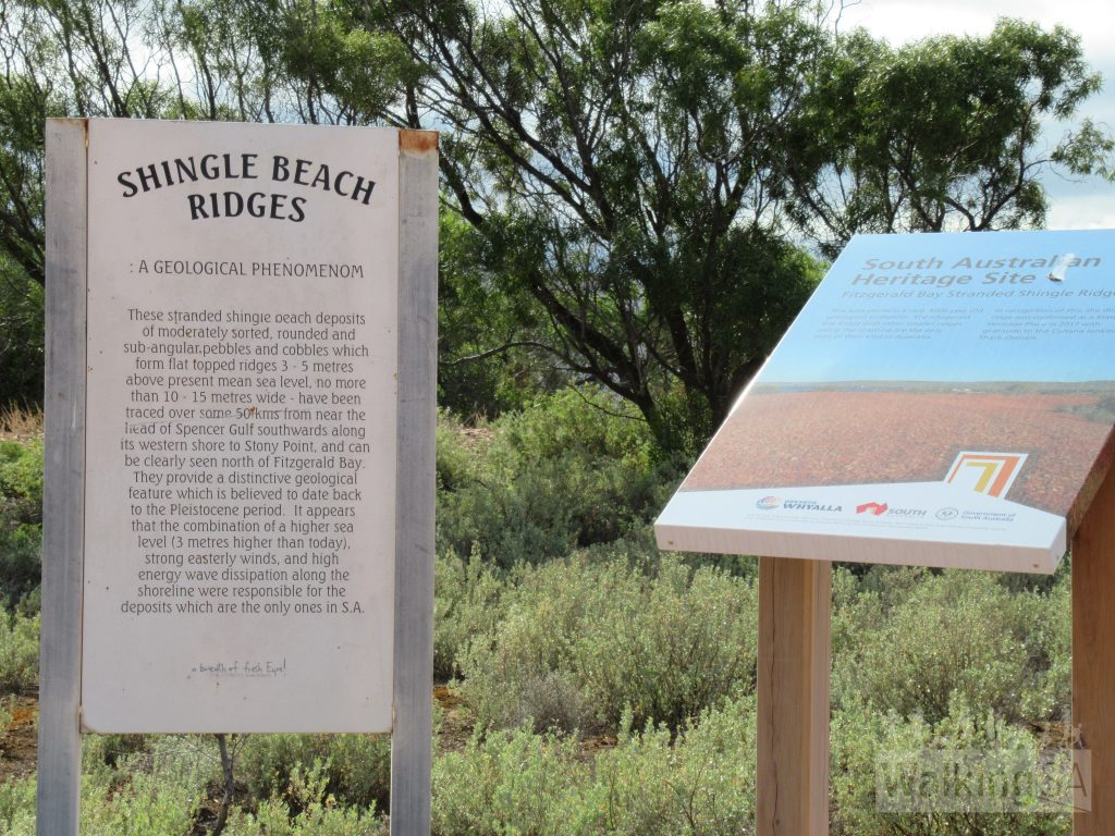 Some good interpretive signs outline the unusual and geologically significant pebble dunes