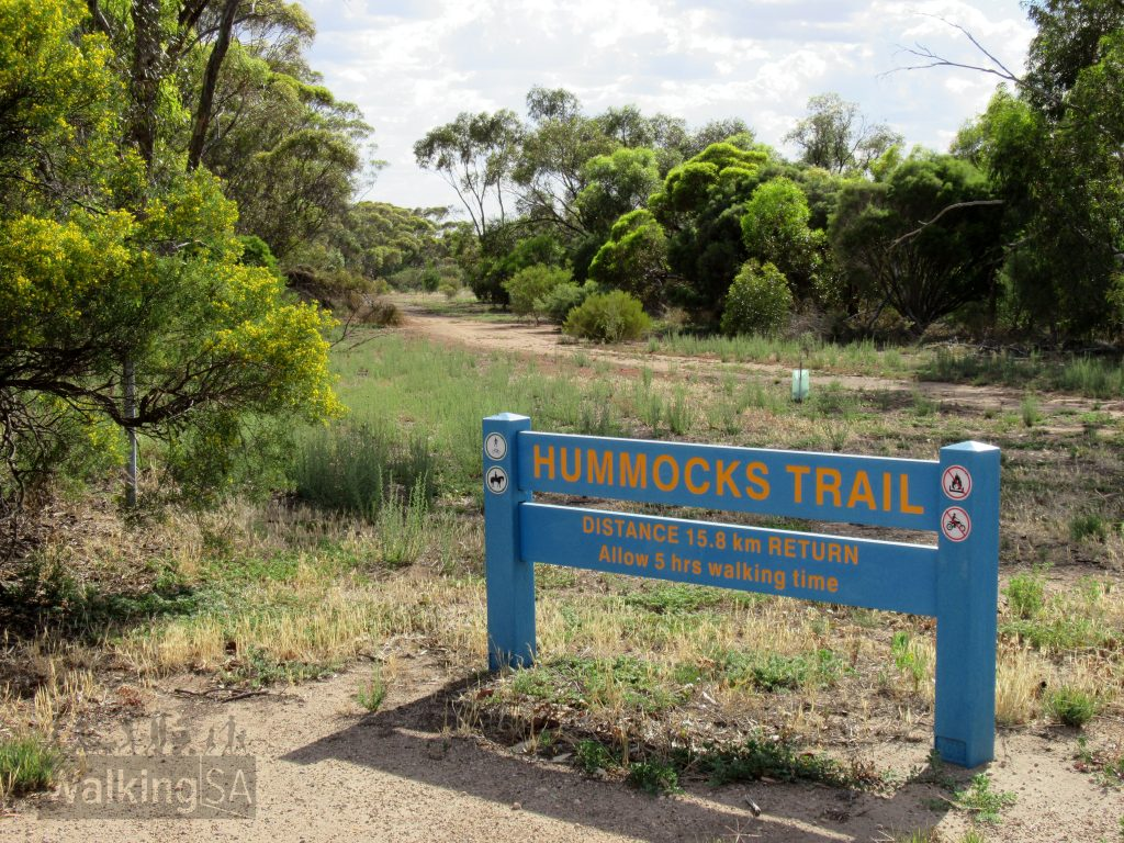 The Hummocks Trail in Bute is a shared use trail for walkers and cyclists that follows the former Bute to Snowtown railway line from Bute towards the small town/locality of Barunga Gap