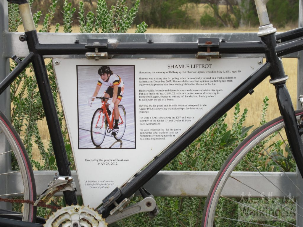 """Shamus Liptrot memorial plaque reads: """"Honouring the memory of Halbury cyclist Shamus Liptrot, who died May 9, 2011, aged 19.Shamus was a rising star in cycling when he was badly injured in a track accident in Tasmania in December, 2007. Shamus defied medical opinion predicting his brain injury would prevent him from leaving his bed for the rest of his life.His incredible fortitude and determination saw him not only ride a bike again, but also finish his Year 12 SACE with two perfect scores after having to learn to talk again, change to writing left handed and having the learn to walk with the aid of a frame.Rvered by his peers and friends, Shamus completed in the Under 19 SA state cycling championships, for three second placings.He won a SASI scholarshipin 207 and was a member of the Under 17 and Under 19 State track cycling tean.He also represented SA in junior gymnastics and triathlon and set numerous swimming records at Balaklava High School."""""""