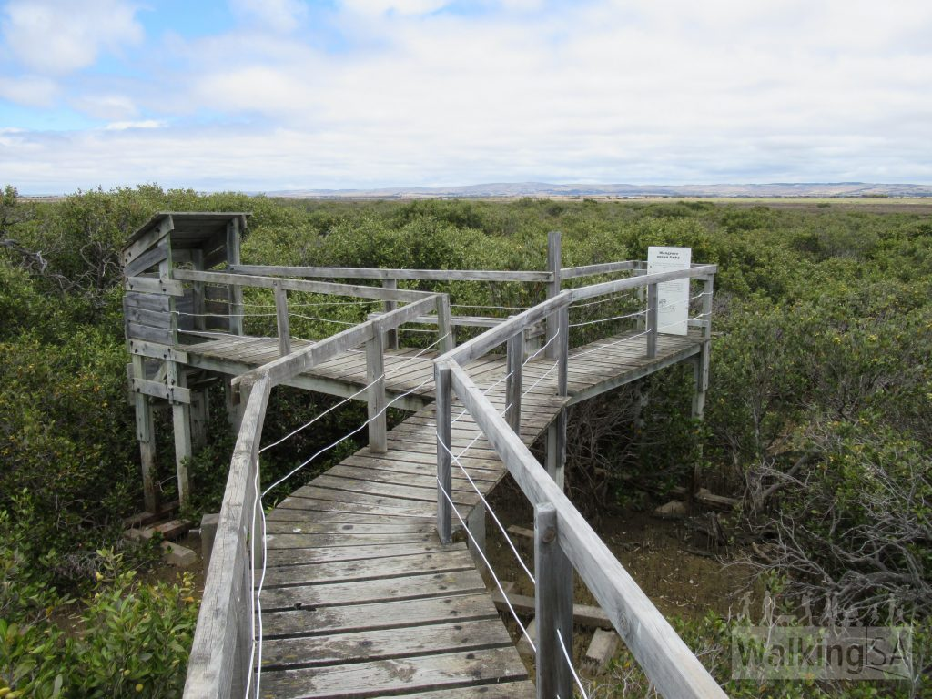 The Mangrove Boardwalk at Tumby Bay ends at this bird hide
