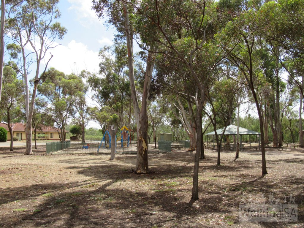 The River Walk starts from the far end of Bunyip Park (Koolunga Playground)
