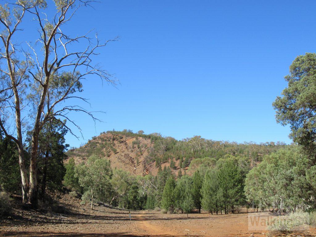 The Yuluna Hike near Koolaman Campground