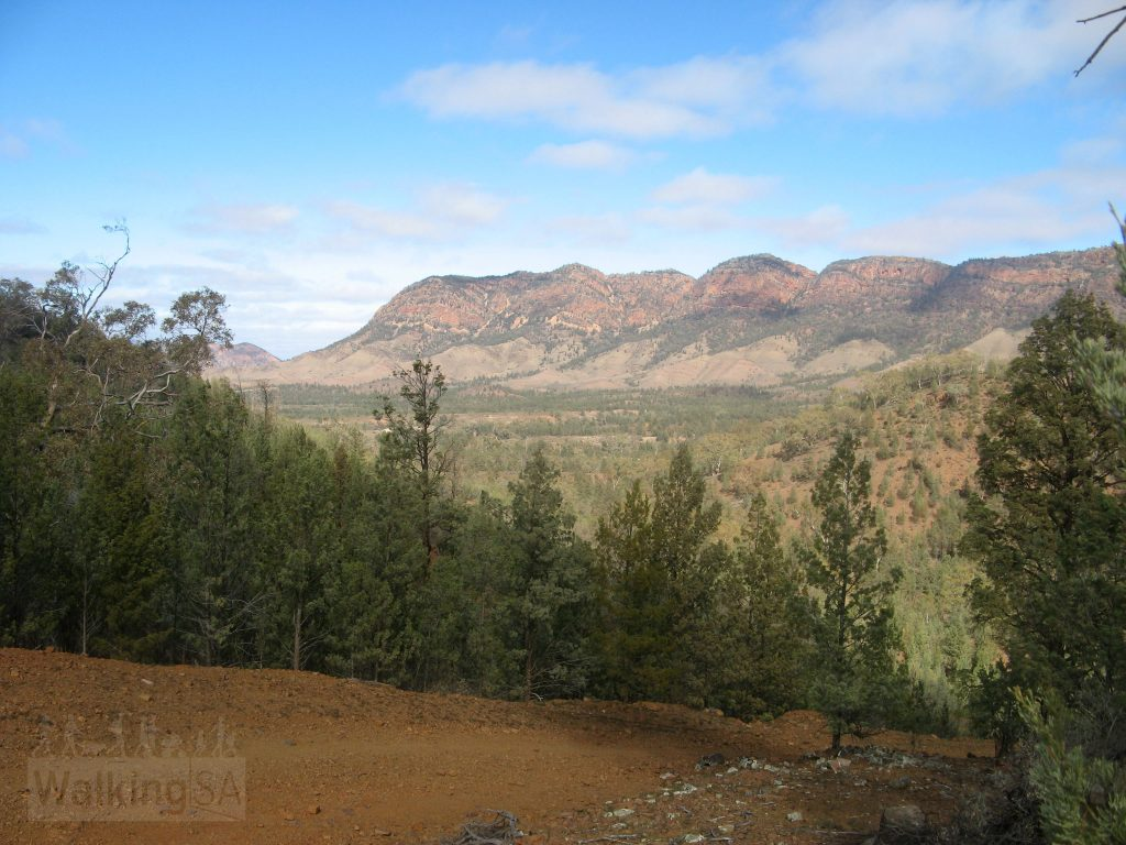 The track out from Aroona Campground is steep but has rewarding views of the Heysen Range