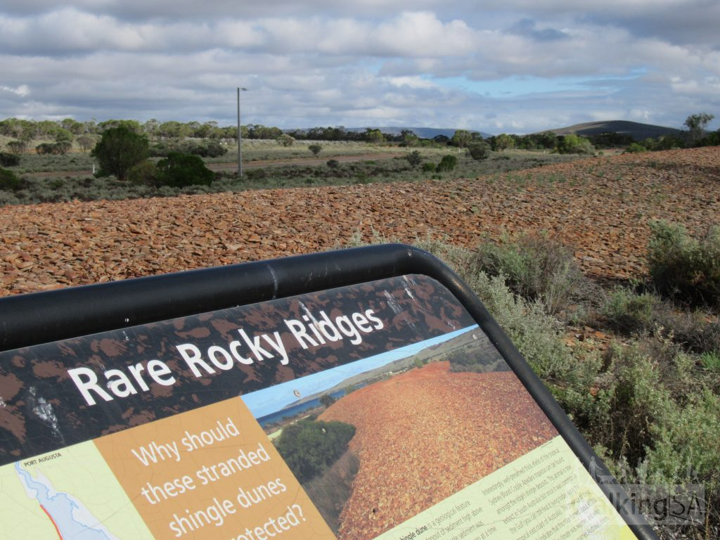 The unusual and geologically significant pebble dunes. These are naturally occurring shingle beach ridges which were formed about 7000 years ago and are the only ones in South Australia.