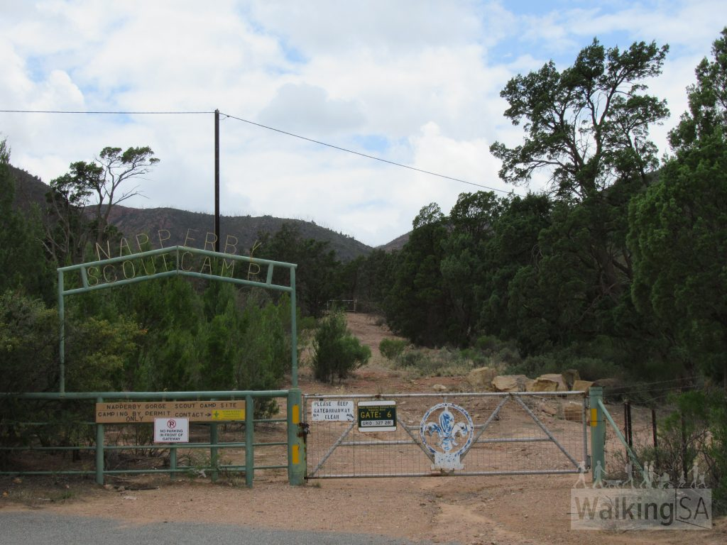 The walk begins from the end of Gulf View Road East (near 116), at Gate 6, (of the Napperby Block, Mount Remarkable National Park.) There is a small roadside parking area adjacent the gate and Napperby Scout Camp sign.