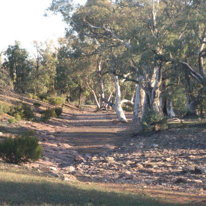 Trezona Hike
