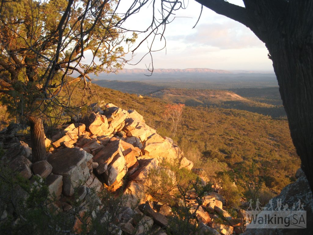 Views from Bridle Gap towards the Chace and Druid Ranges