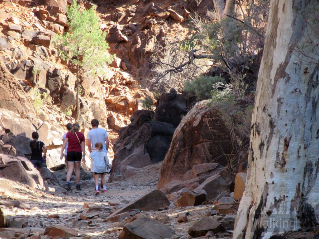 Walking into Sacred Canyon is easy, although you are following a rocky creek and not a formed walking trail