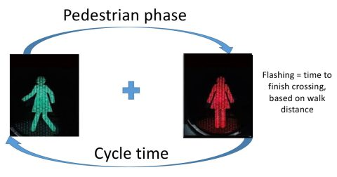 Pedestrian phase + cycle time. Flashing = time to finish crossing, based on walk distance