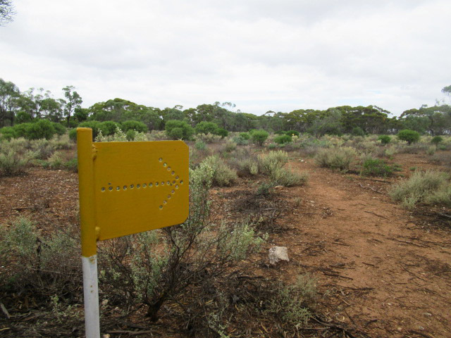 The Three Habitat Walk is marked with yellow markers