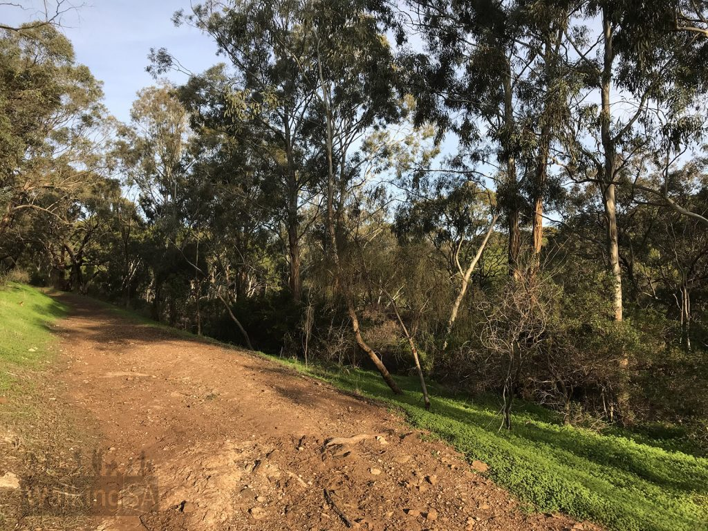 The trails are generally rough wide tracks, similar to fire tracks in the Adelaide Hills