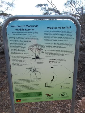 Trailhead sign of the Mallee Trail (Nature Trail), Moorunde Wildlife Reserve