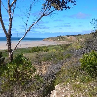 Stansbury Coastal Trail