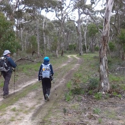 Extended Loop of Padthaway Conservation Park
