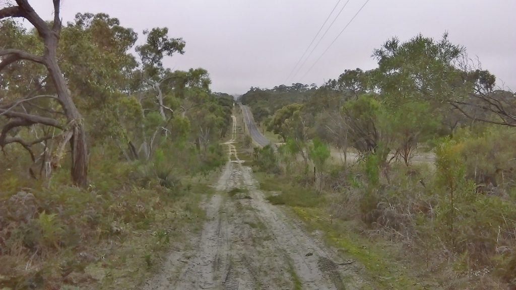 Walking along the Banksia Loop, parallel to Beeamma-Parsons Rd