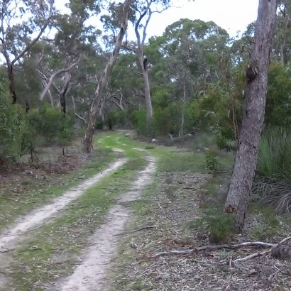 Banksia Loop, Padthaway Conservation Park