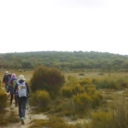 Tyms Lookout Hike, Ngarkat Conservation Park
