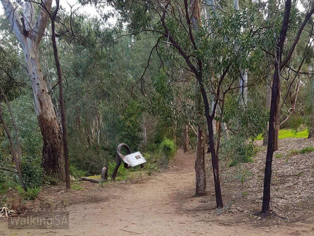 Start of the Bunyip Trail in Bonython Park/Tulya Wardli