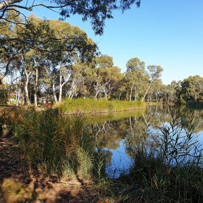 Little Para Linear Park (Lower) – Happy Home Reserve to Port Wakefield Road