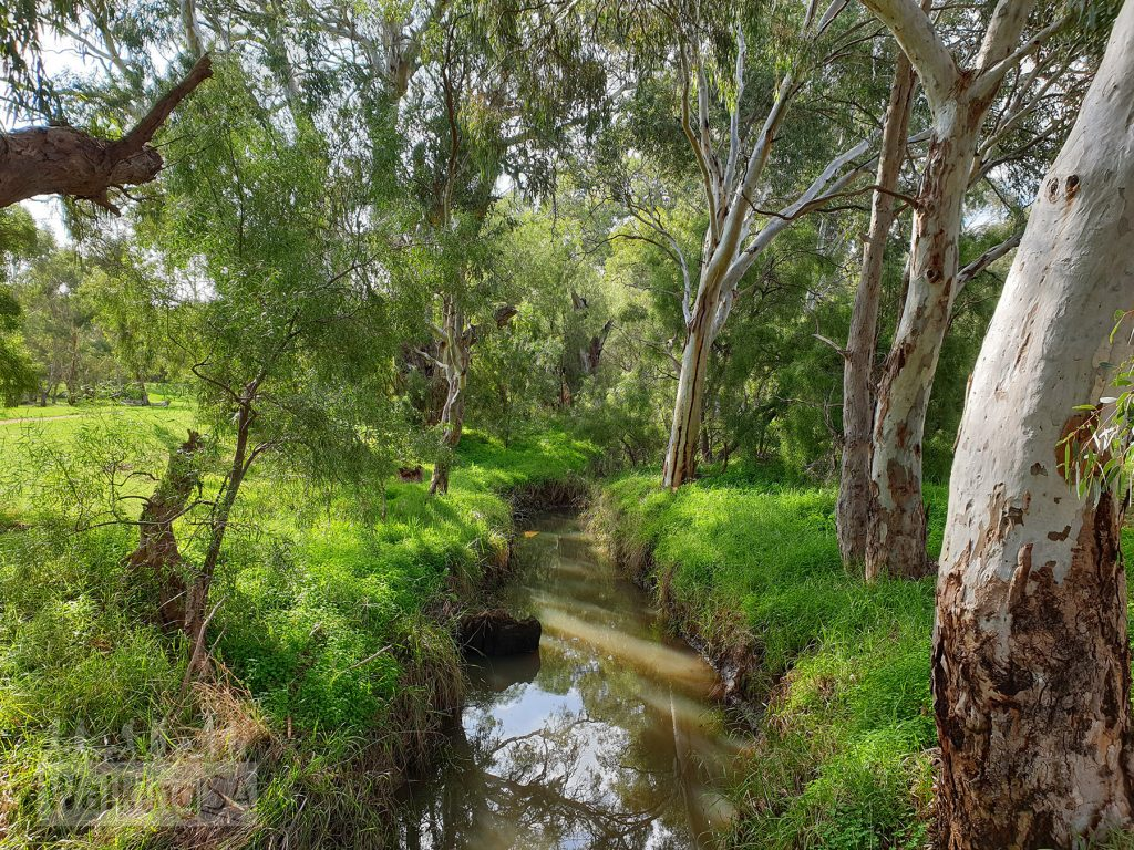 The Little Para River, near Port Wakefield Road