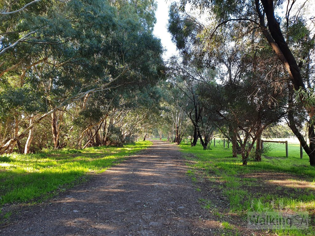 Following the path along Jones Road around past the horses