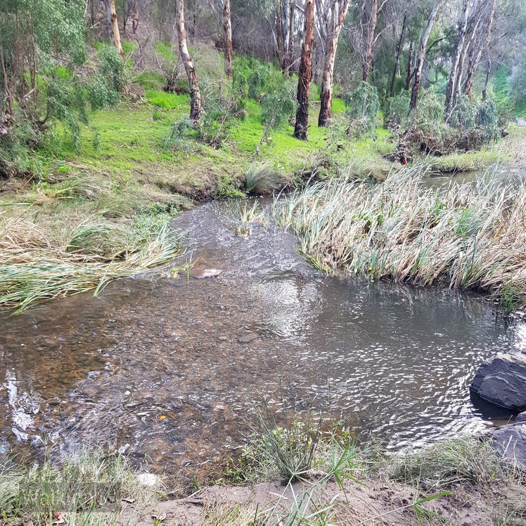 Views of the River Torrens on the Bunyip Trail