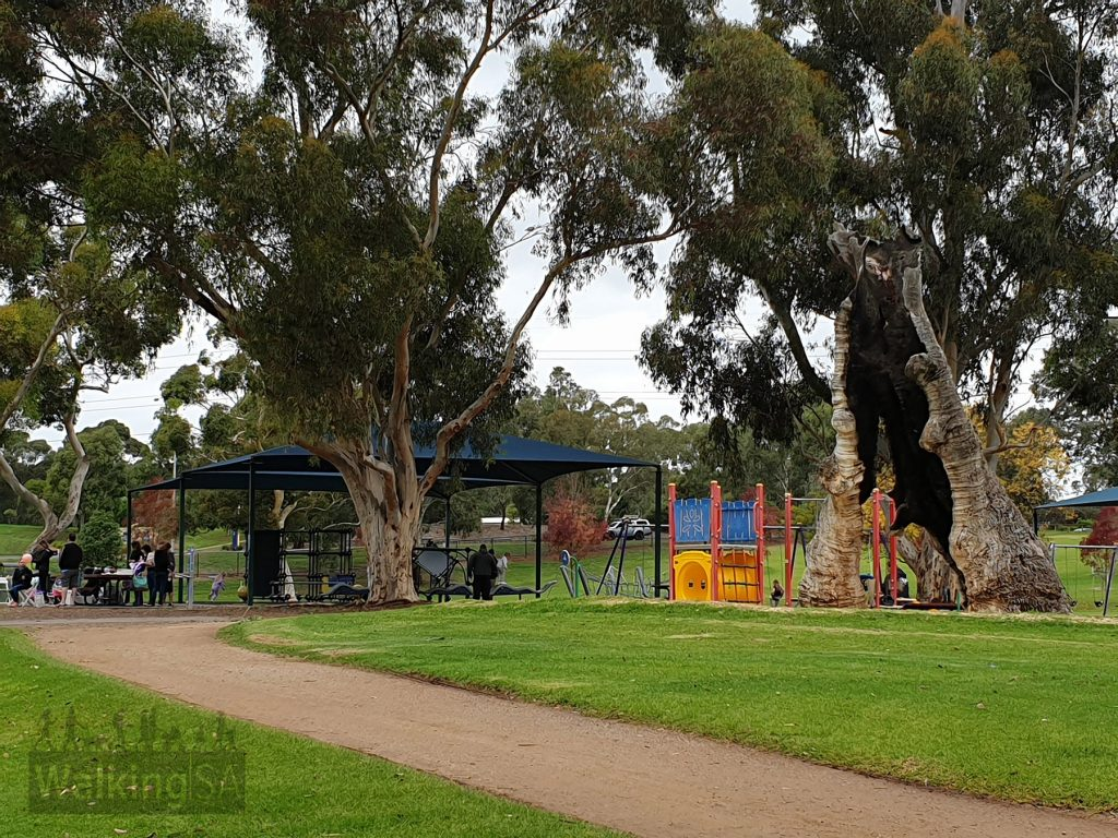 Playground and picnic area at Carisbrooke Park